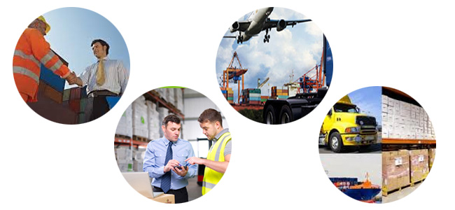Skyline Freight Forwarders - Company Profile